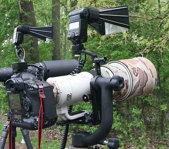 Light Stand Gimbal: Secrets Of Digital Bird Photography