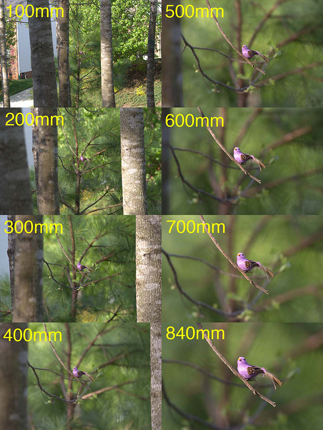 focal-lengths-5.jpg